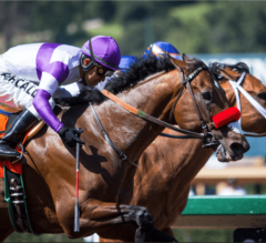 B Squared Necks Out Victory In $100,000 Thor's Echo