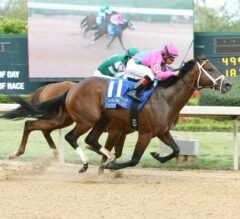 City of Light Defeats Accelerate Late In G2 Oaklawn Handicap