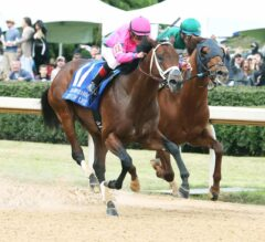 Racing Dudes Divisional Rankings 5/16/18: Calm Before the Preakness Storm