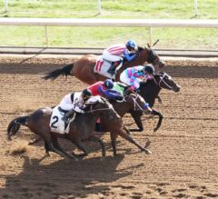 Finley'sluckycharm Somehow Finds First In G1 Madison