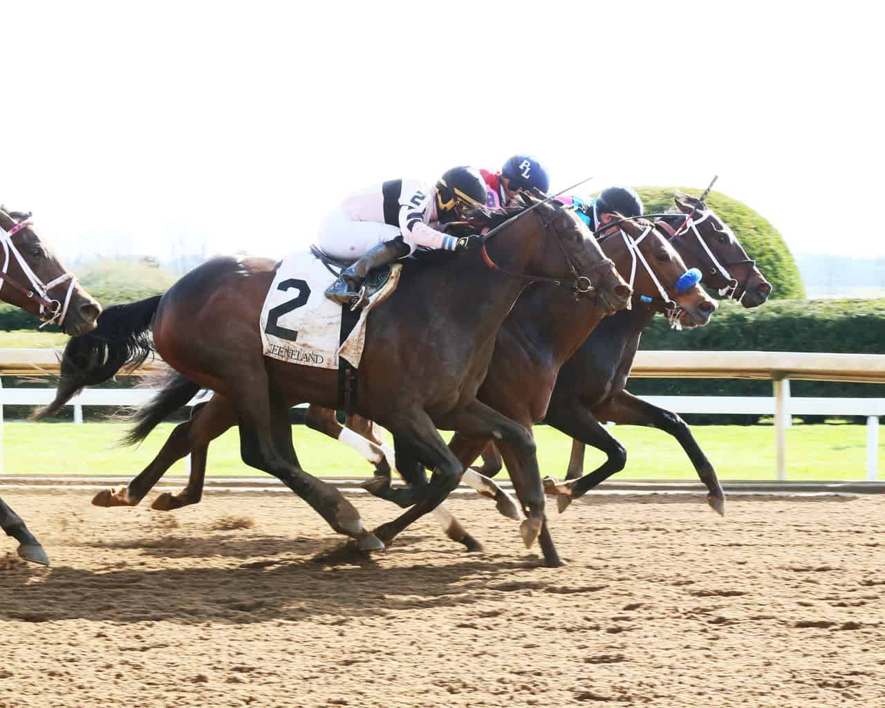 Favorites shine in final preps at Keeneland