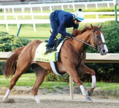 Haskell Invitational Preview: Good Magic Looks to Take Charge of Division