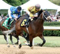 Peter Pan Preview: Belmont Contenders Look to Step Up