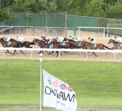 Papa Dude's Free Oaklawn Park Picks for Saturday 4/3/21