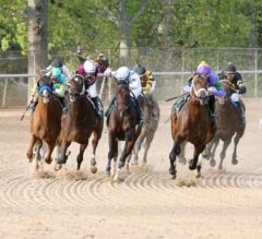 Increase the Exotic Payout Tenfold in Preakness