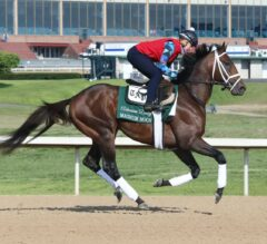 Arkansas Derby Preview: Don't Forget About Magnum Moon