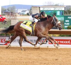 Charles Town Classic Preview: Something Awesome Goes for Two in a Row