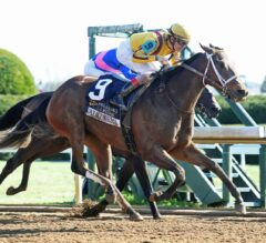 Valadorna Victorious in the G3 Doubledogdare