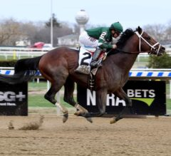 Army Mule Crushes G1 Carter