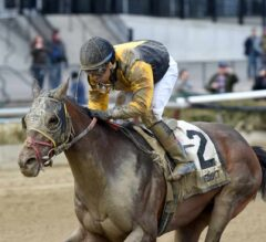 Discreet Lover's Major Move Steals G3 Excelsior