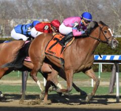 Holiday Disguise Turns The Tables In G3 Distaff