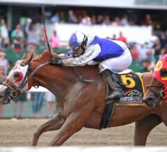Page McKenney Charges Home Late to Win G3 Salvator Mile