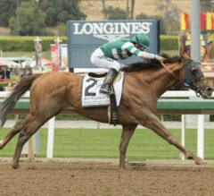Pacific Classic Preview: Accelerate Ready to Shine in Del Mar's Biggest Race