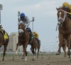 Curlin's Honor Crushes the $100,000 Woodstock