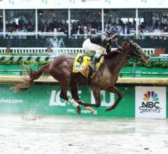 Funny Duck Cannonballs Tote in G3 Pat Day Mile