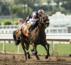 Fault Flies Down the Stretch to Win G3 Adoration
