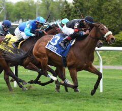 Holy Helena Cruises in G2 Sheepshead Bay