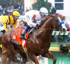 Belmont Stakes Preview: Justify Goes for Immortality