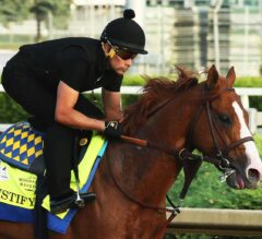 Preakness Stakes 143 Update: Bob Baffert Discusses Justify
