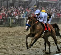 Top 5 Preakness Moments of the 2000s: 2019 Edition