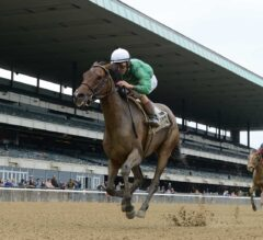 Kirby's Penny Makes the Grade in G3 Vagrancy Handicap