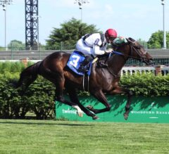 Vettori Kin Vectors to Victory in G3 Louisville Handicap