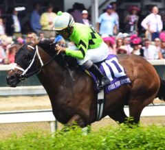 Will Call Whisks Away in G3 Twin Spires Turf Sprint