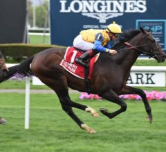 Robert Bruce Remains Unbeaten in G3 Fort Marcy