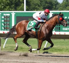 Harlan Punch Makes the Grade in G3 Philip H. Iselin