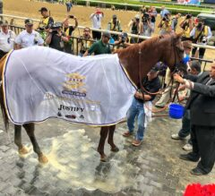 Triple Crown Skinny: Justify's Historic Run Makes Belmont Stakes Day Special