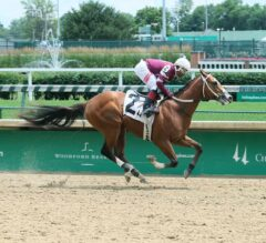 Sanford Stakes Preview: Bano Solo Squares Off Against Pletcher Duo