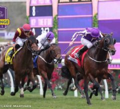 Breeders' Cup Announces Three New Juvenile Turf Sprint Challenge Races