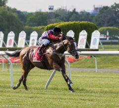 Call To Mind Gives Royal Performance in G2 Belmont Gold Cup Invitational