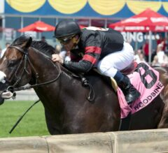 Delta Prince Crowned in G2 King Edward