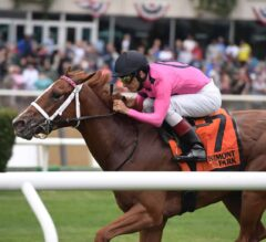 FREE Win Picks for Thanksgiving at Aqueduct