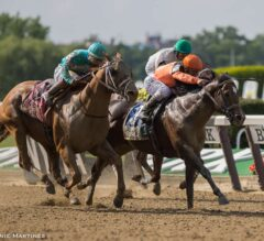 Imperial Hint Marches Back in G2 True North