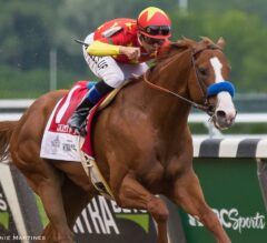 Racing Dudes Divisional Rankings 12/19/18: Horse of the Year Debate Continues