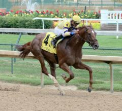 Indiana Derby Preview: King Zachary Ships in as Heavy Favorite
