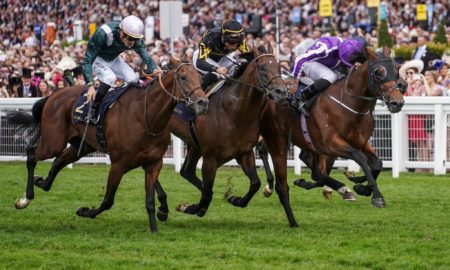 Merchant Navy wins at Royal Ascot