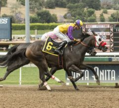 Ollie's Candy Necks Out Victory in G2 Summertime Oaks