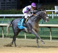 Pavel Finally Scores Big in G1 Stephen Foster