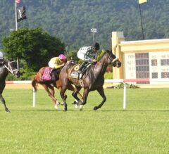 Morticia Much the Best in $100,000 Penn Ladies Dash