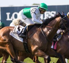 Sword Dancer Stakes Preview: Spring Quality Headlines Competitive Field