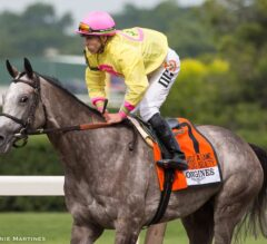 A Raving Beauty Clinches Top Honors in G1 Just a Game