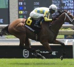 Ride a Comet Scores in $100,000 Charlie Barley