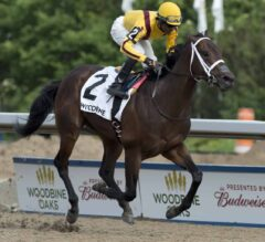 Queen's Plate Preview: Casse Holds Strong Hand