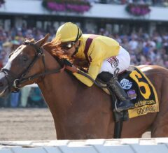 Good Magic Secures Top Slot After Cruising in G1 Haskell