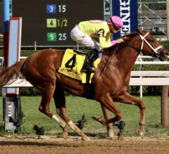 Cotillion Stakes Preview: Fab Filly Monomoy Girl Returns