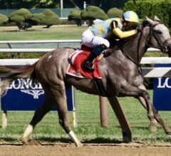Spinaway Stakes Preview: Chasing Yesterday's Ghost
