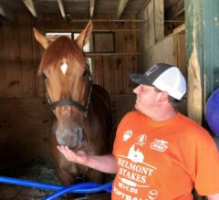Generation Now: Summers & Mind Your Biscuits Relaxed Towards Whitney